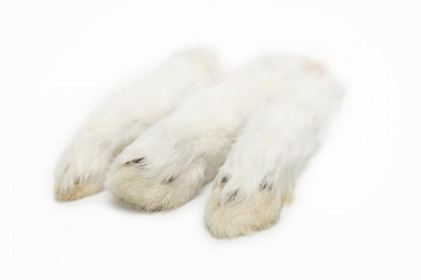 Kaninchenläufe mit Fell