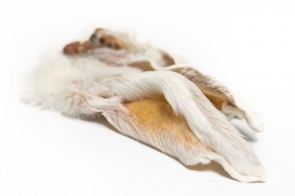 Kaninchenohr mit Fell