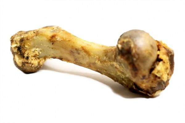 Schinkenknochen